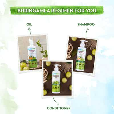 Mamaearth bhringraj shampoo range