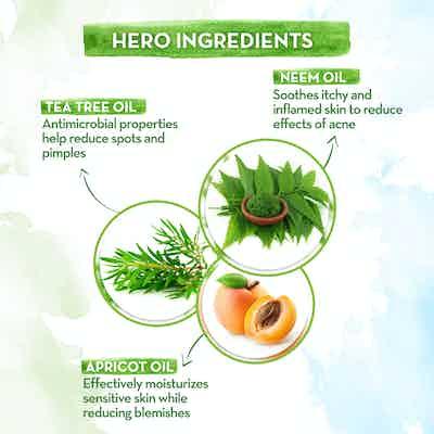 key ingredients neem face pack