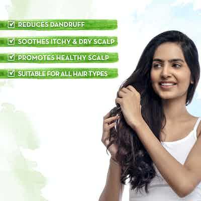 Tea Tree Hair Oil for Dandruff Free Hair