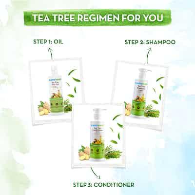Tea Tree Conditioner regimen