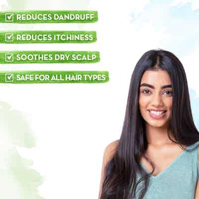 mamaearth tea tree shampoo for all hair type