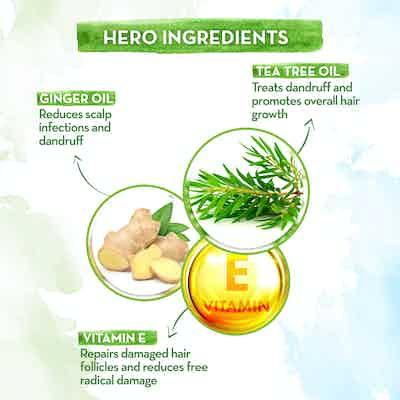 mamaearth tea tree shampoo key ingredients