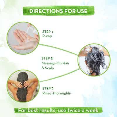 mamaearth tea tree shampoo how to use